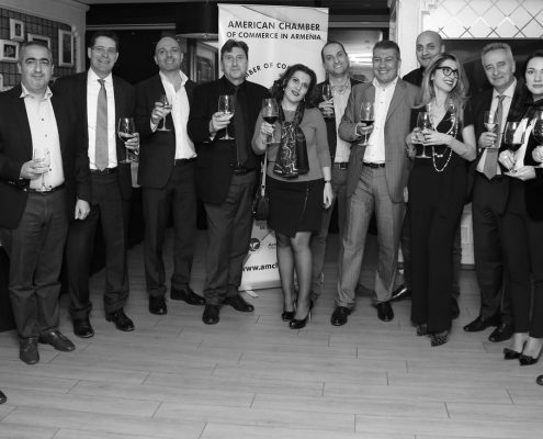 Board members (left to right): Arthur, David, Paul, Hayk, Gagik, Irina, Karen, Ara, Georgi, Diana, Ashot, Elina, Aharon